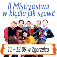 eurolpolska.pl olej silnikowy